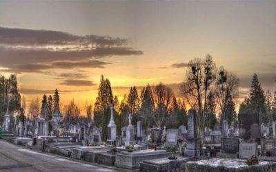 Denkt u dat de dekking van de begrafenisverzekering te laag is?