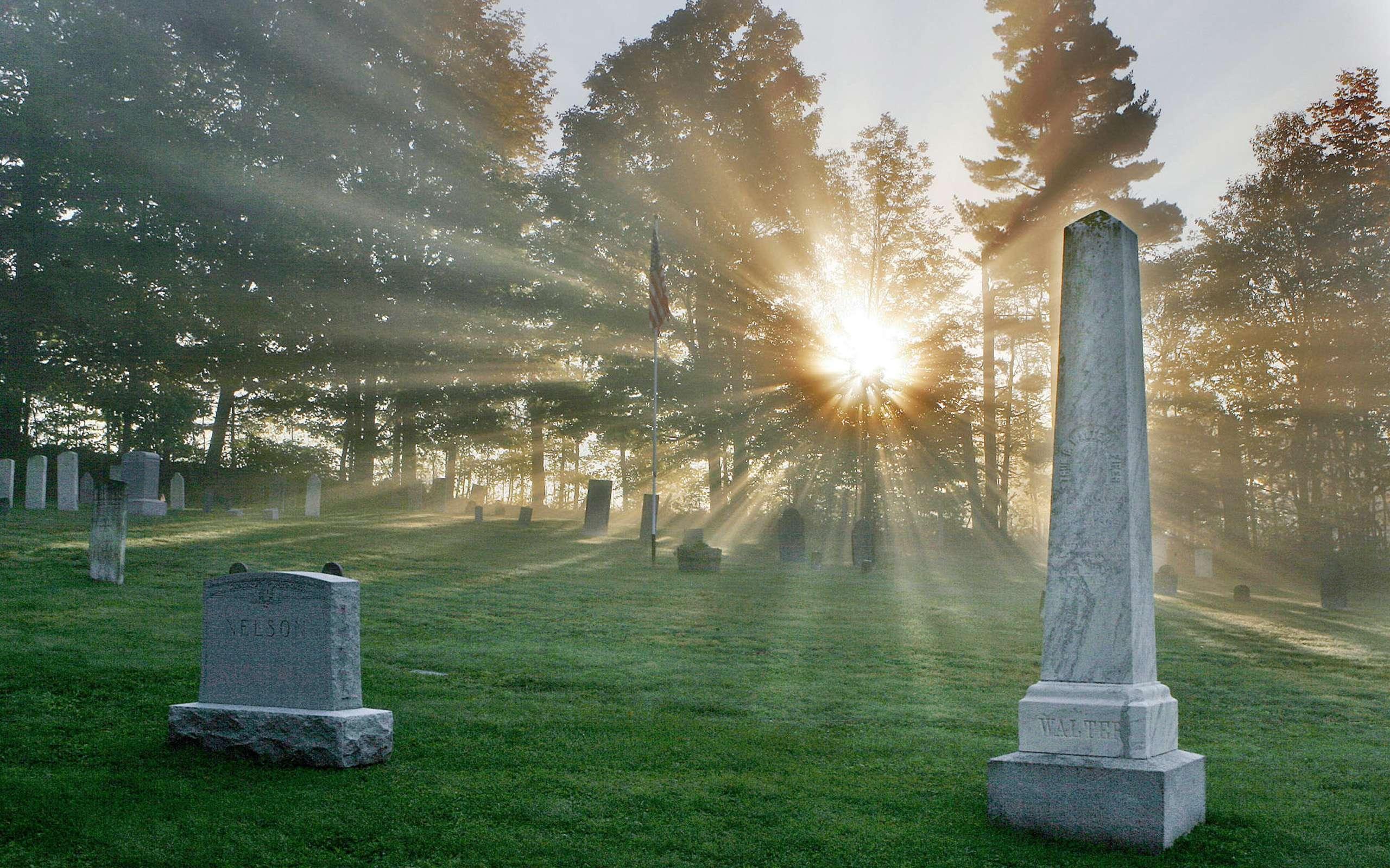 partner begrafenis verzekering